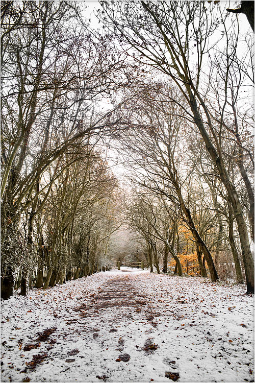 Snowy Path, Flatford, by DaveBulow